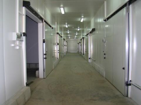 Охладителни камери с капацитет 800 тона - хладилната инсталация позволява на продукцията от ябълки и череши от градините на MELISA SANDANSKI