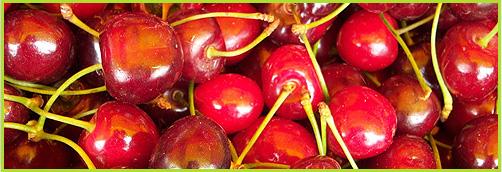 мелиса-сандански-галерия-череши-melisa-sandanski-galery-cherry