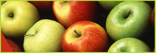 мелиса-сандански-галерия-ябълки-melisa-sandanski-galery-apples