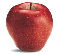 Ябълки-Глостър-Сортове--Ябълки-от-Мелиса-Сандански-Apple-varieties-Gloster-apples-from-melisa-sandanski