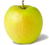 Ябълки-Златна-Превъзходна-Сортове--Ябълки-от-Мелиса-Сандански-Apple-varieties-Golden-Delicious-apples-from-melisa-sandanski